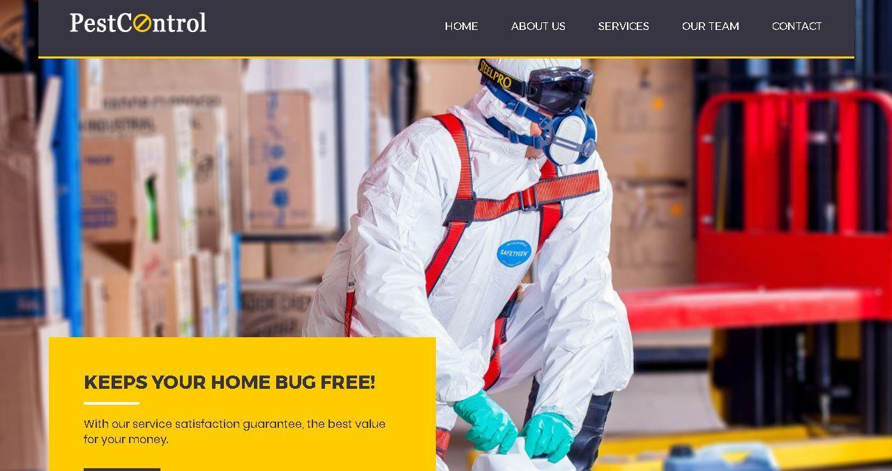 Pest Control Version 2 Affordable Website Design Marketing Solution Top Web Designs