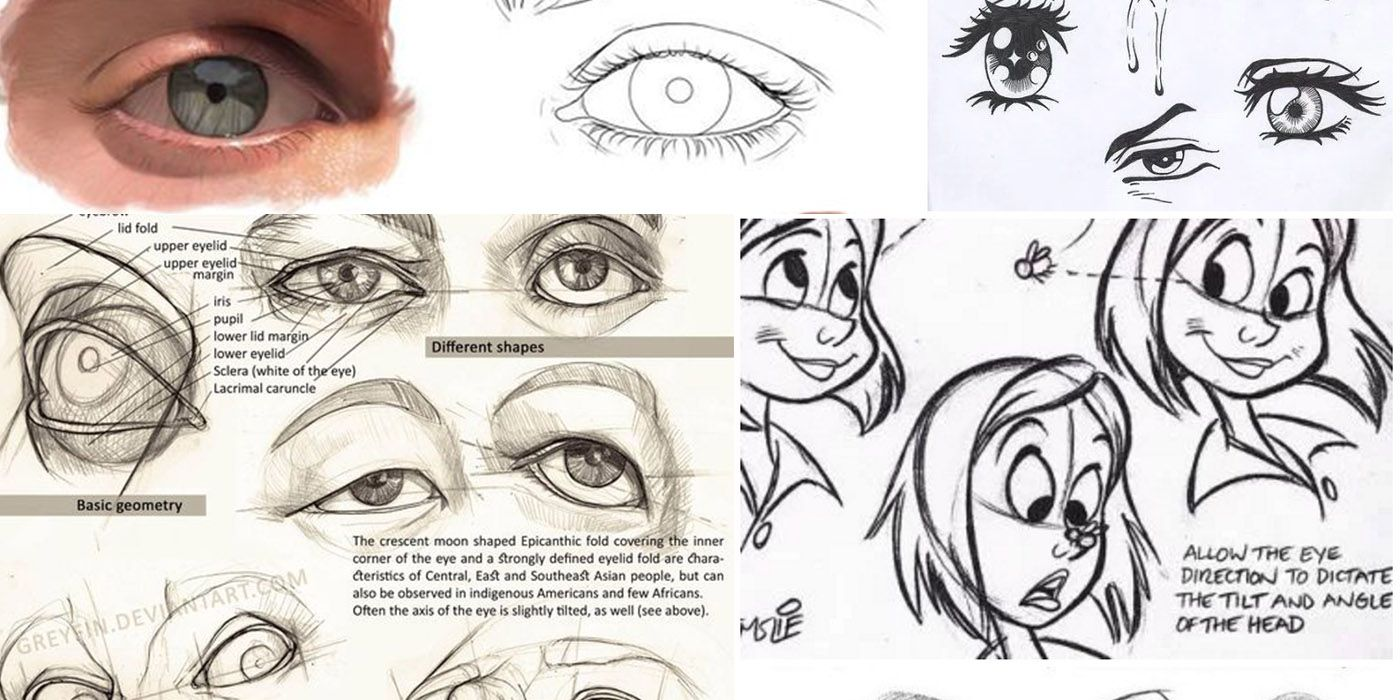 Character+Design+Collection:+Eyes+Anatomy | Dibujo | Pinterest ...