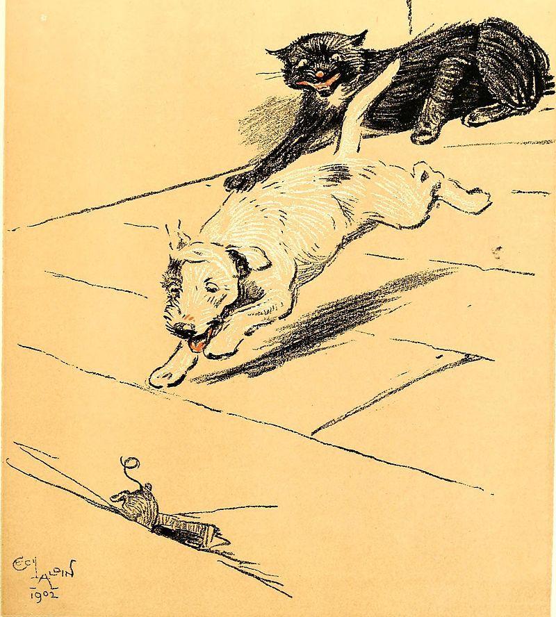 Cecil Aldin A Dog Day 1902 Art Repro Photo Print Picture No.7