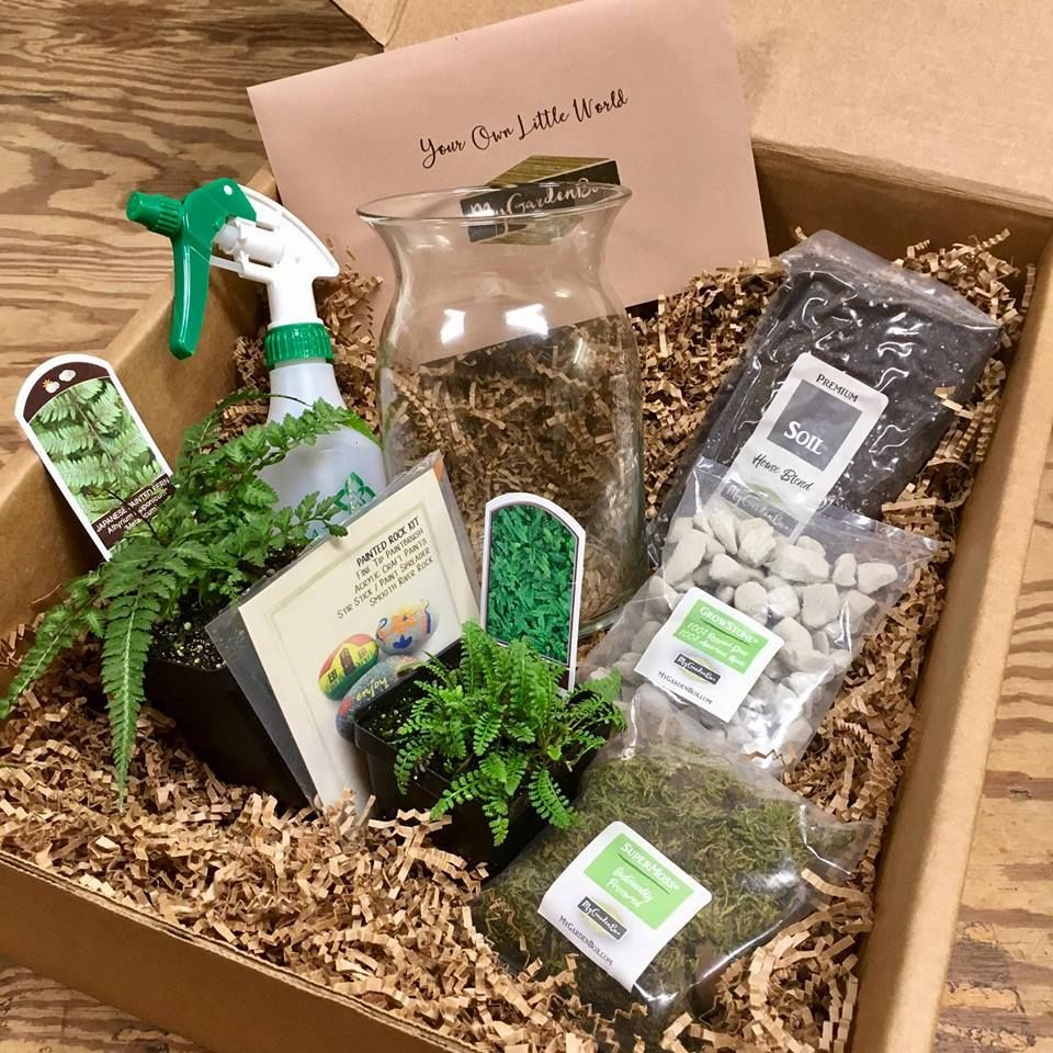 My Garden Box Subscription Box In 2020 With Images Garden