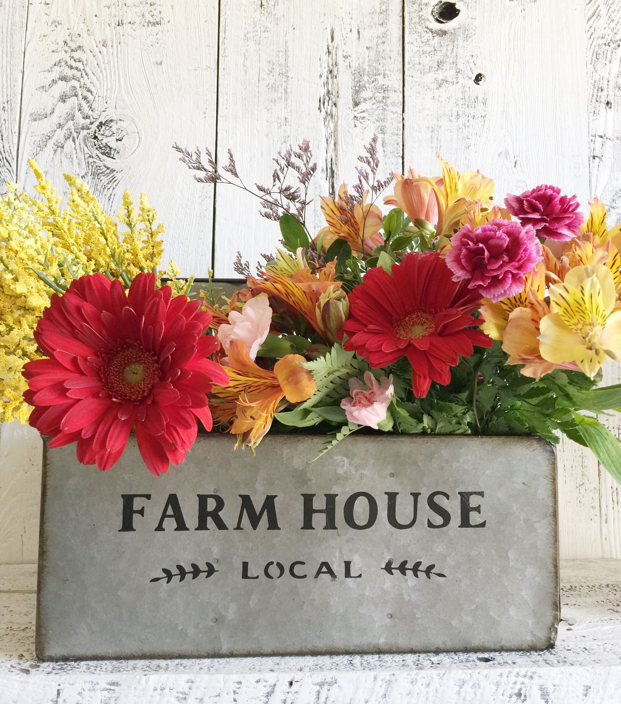 Galvanized Steel Farm House Flower Container, Bottle