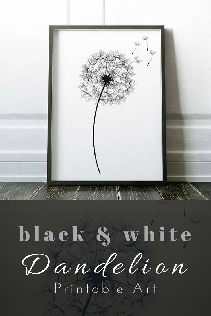 Dandelion print wall art print black white print flower wall