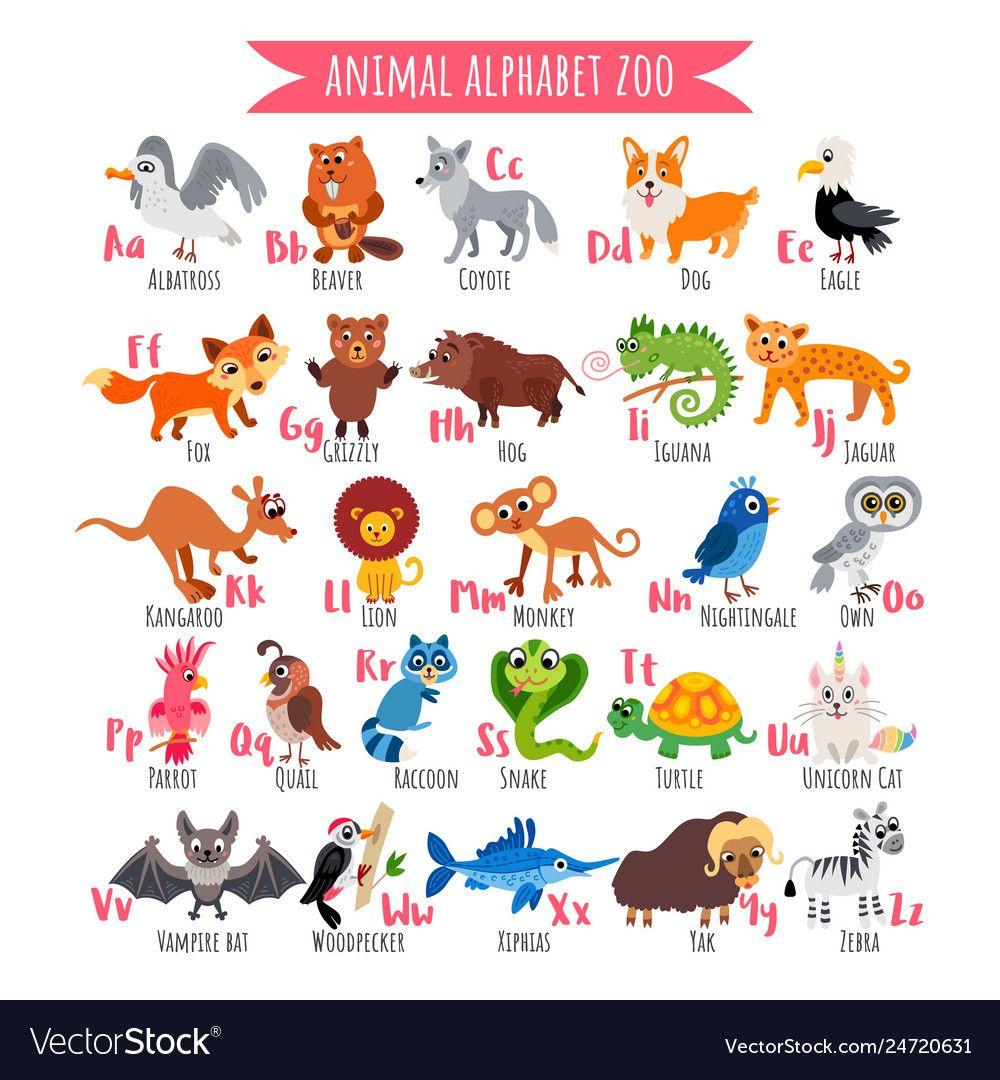 Zoo alphabet az animal alphabet poster vector image on