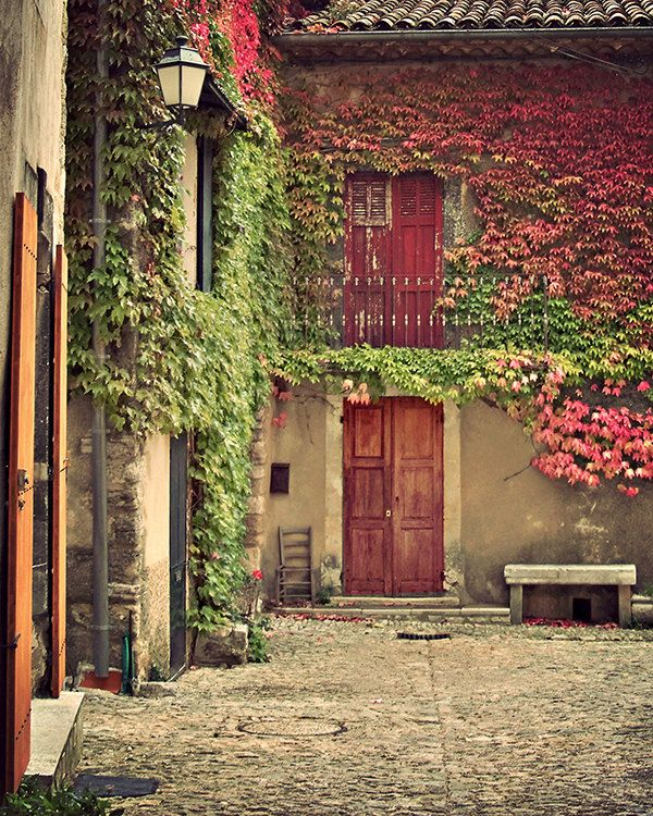 Superbe Provence, France 8x10 Art Print For Home Decor   Flower Vines, Red Door,