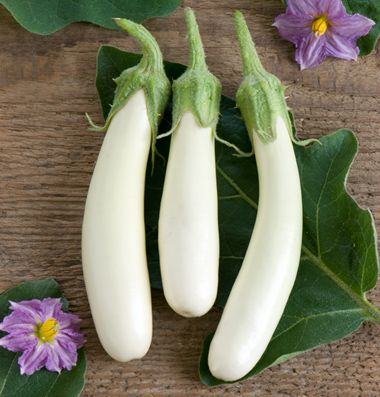 Gretel F1 Eggplant Seed Johnny S Selected Seeds Eggplant Seeds Eggplant Plant Eggplant