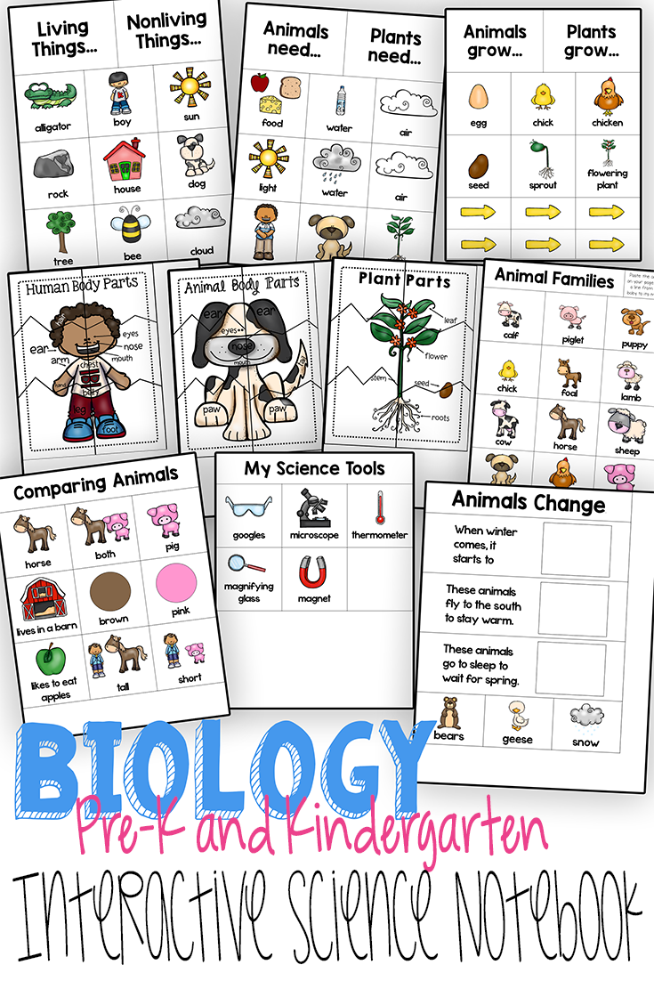 Predownload: This Interactive Notebook Is Designed With Preschool And Kindergarten Skill Sets In Mind Interactive Science Notebook Preschool Science Interactive Notebooks [ 1102 x 735 Pixel ]