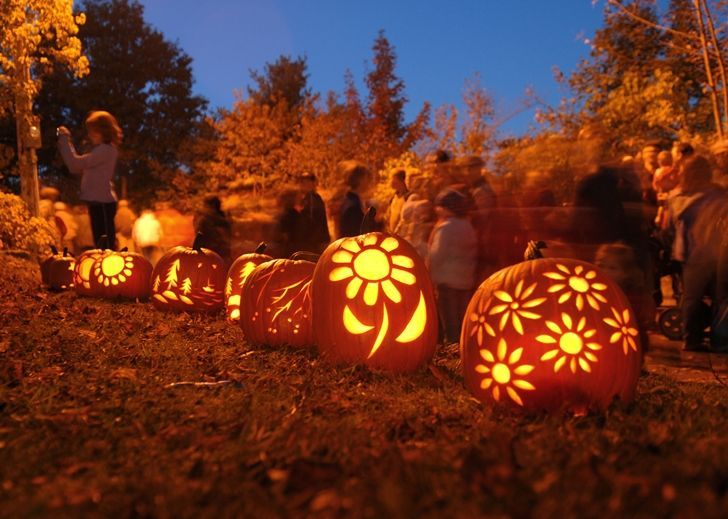 """October proved a riot a riot to the senses and climaxed those giddy last weeks before Halloween.""  ― Keith Donohue"