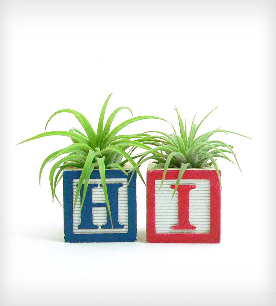 """Hi"" Vintage-Style Alphabet Block Planter"
