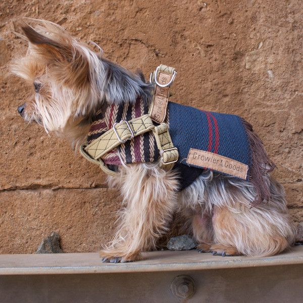 Eco Friendly Dog Poncho And Harness Dogs Dog Friends Native