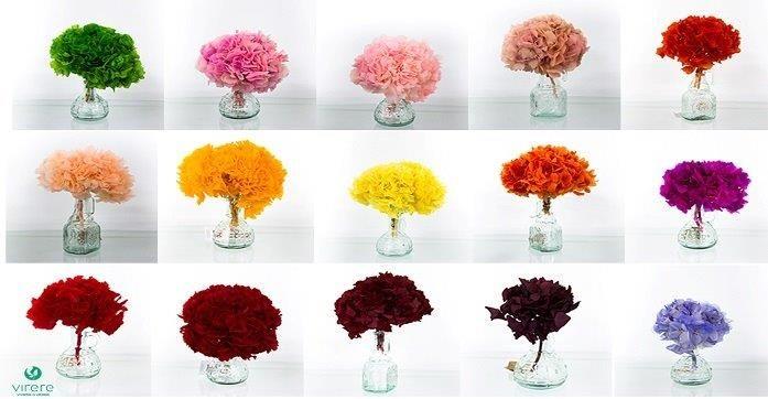 Fiori Composti.Le Ortensie Di Virere Sono Disponibili In Bouquet O In Pannelli