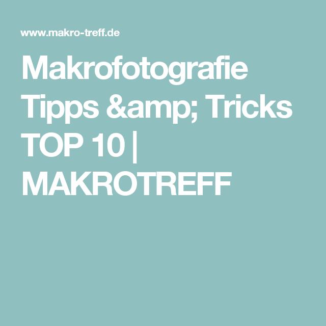 Makrofotografie Tipps & Tricks TOP 10 | MAKROTREFF