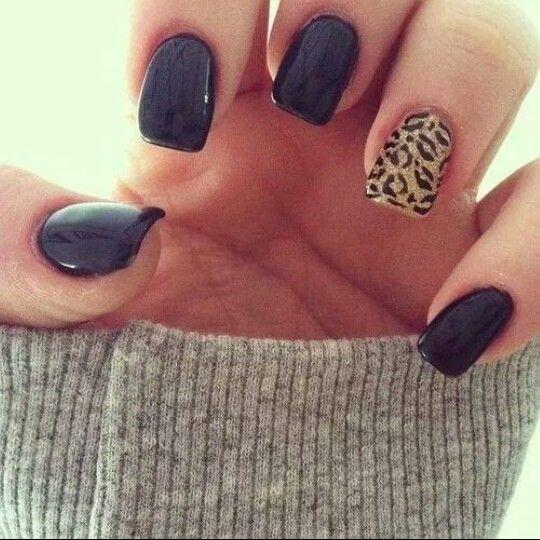 Cheetah / Black