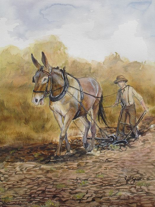 Image Result For Man Plow Mule Old Paintings Canvas
