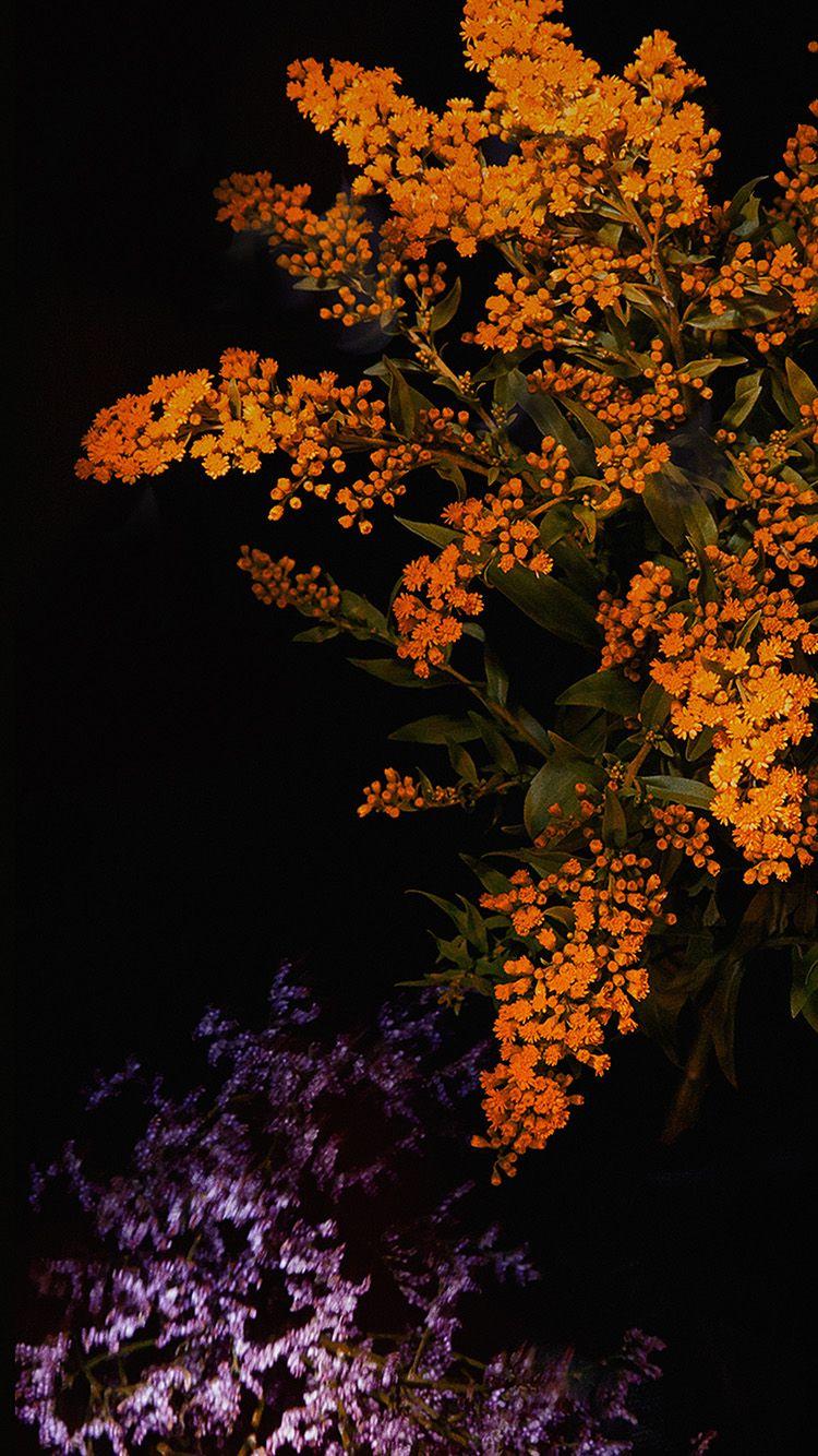Apple Orange Flower Dark Ios9 Iphone6s Wallpaper Hd Iphone