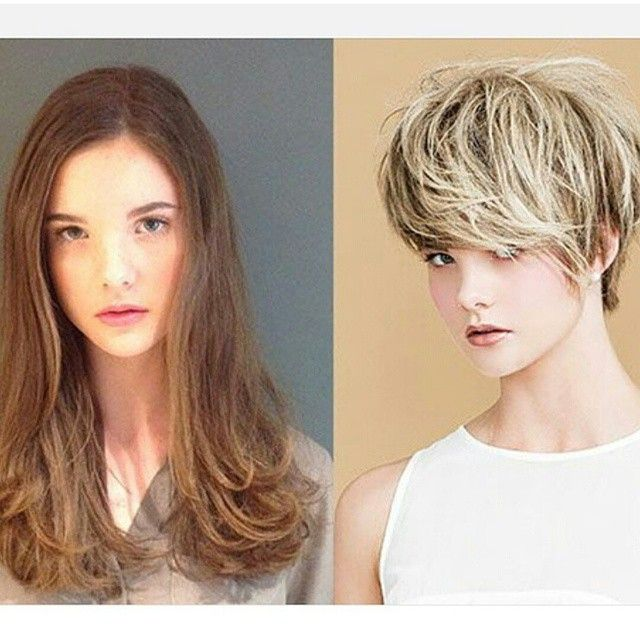 37++ Long to short hair makeovers facebook ideas in 2021