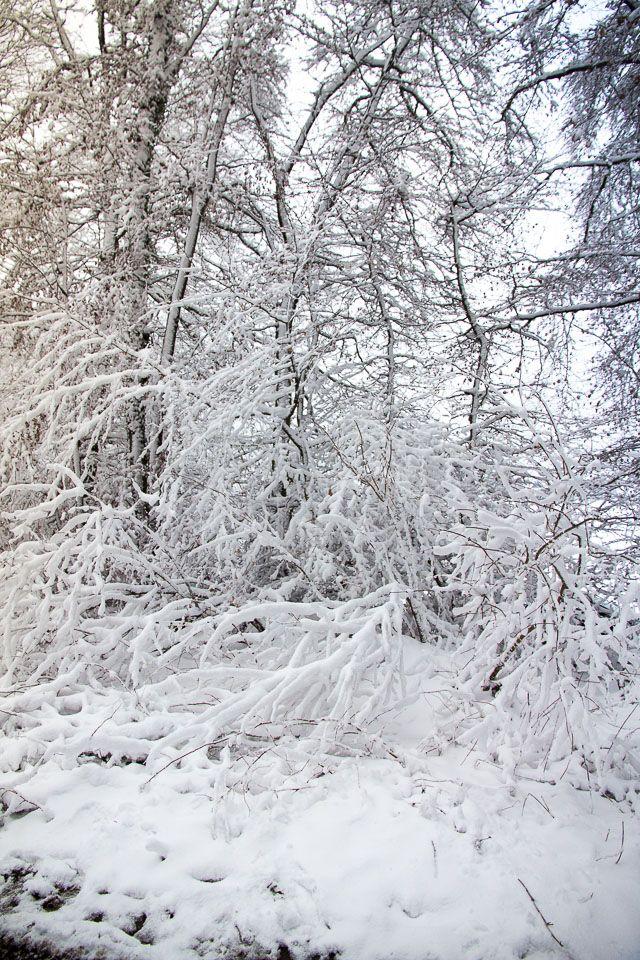 traumhafte winterlandschaft so sch n ist das sauerland im winter schnee eis k lte das alles. Black Bedroom Furniture Sets. Home Design Ideas