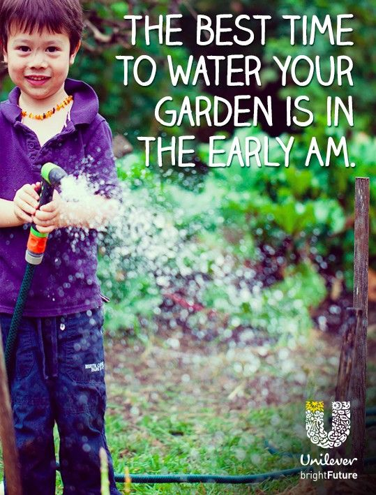 Something as small as being mindful when watering makes a BIG impact on the environment. @UnileverUSA #brightFuture  #Partner