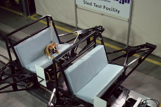 Subaru Funds Center For Pet Safety Crash Testing For Dogs W Video