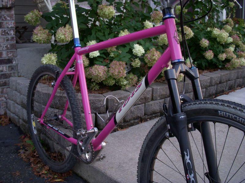 IBIS Pink SS