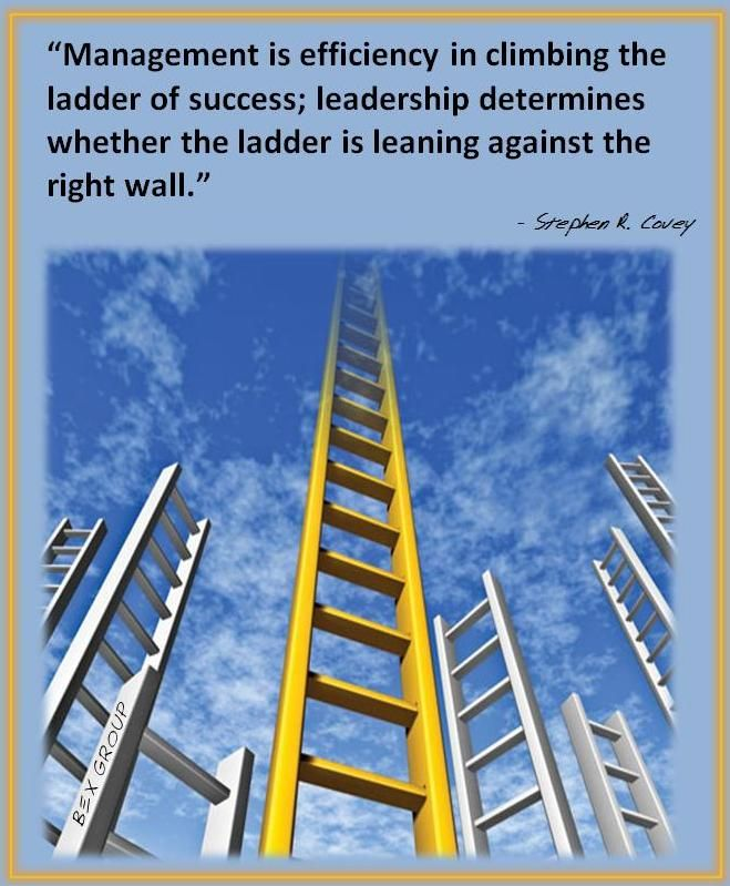 Management is efficiency in climbing the ladder of success - the ladders resume