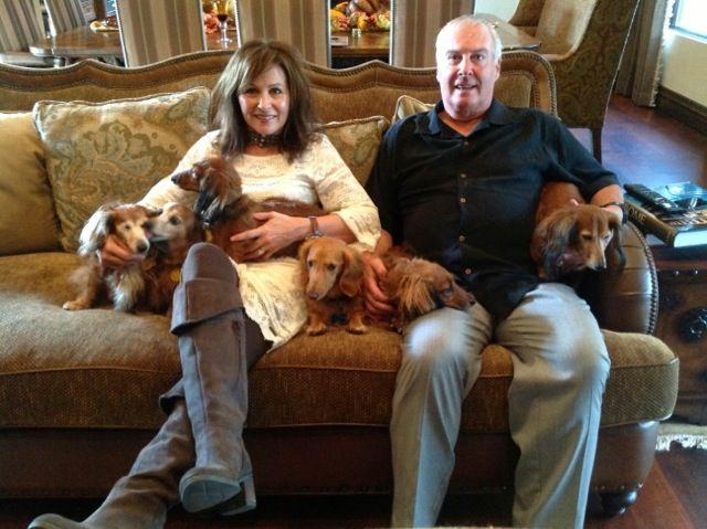Dachshund Rescue Of Houston Dachshund Rescue Dachshund Old Dogs
