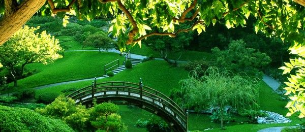 green-paradise- japan