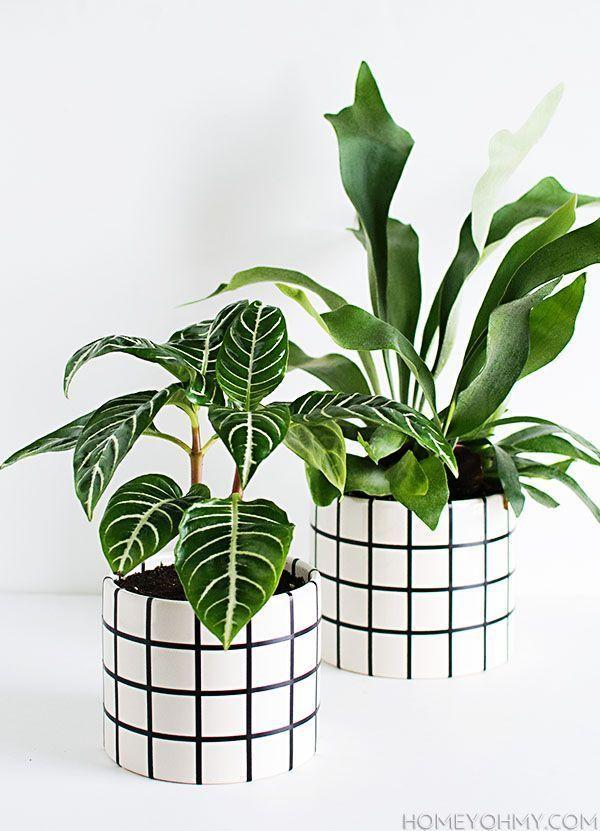 DIY Grid Planter