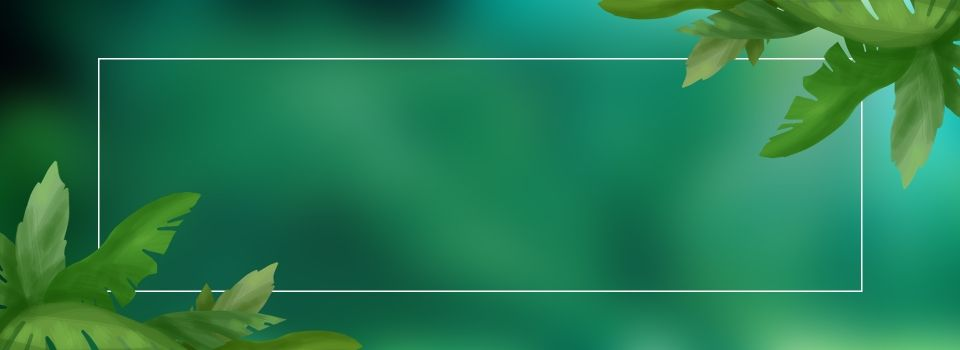 Lynx Summer Green Banner Background Banner Background Images Iphone Wallpaper Night Plant Background Green banner background hd images