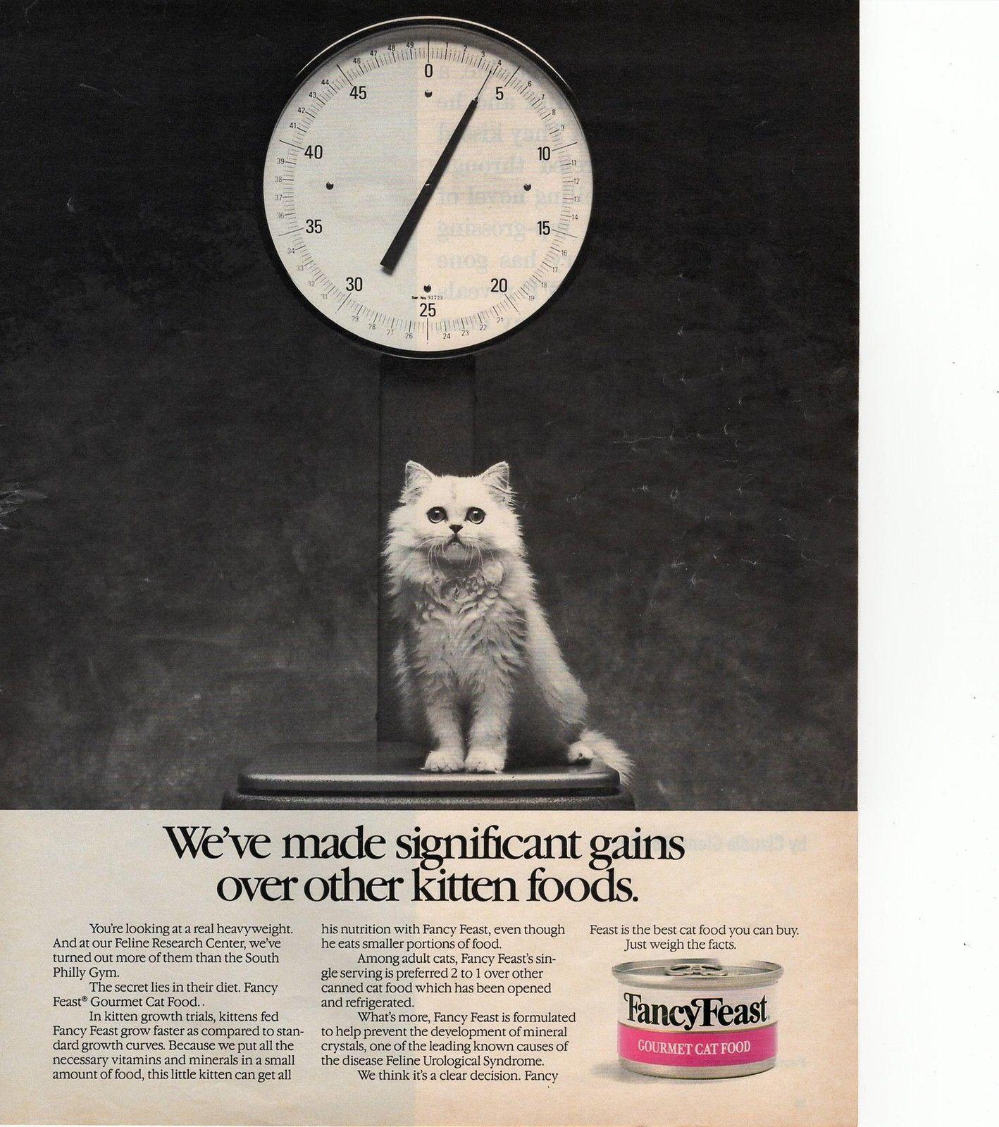 Pin By J E Hart On Cats In Advertising Kitten Food Feline Kittens