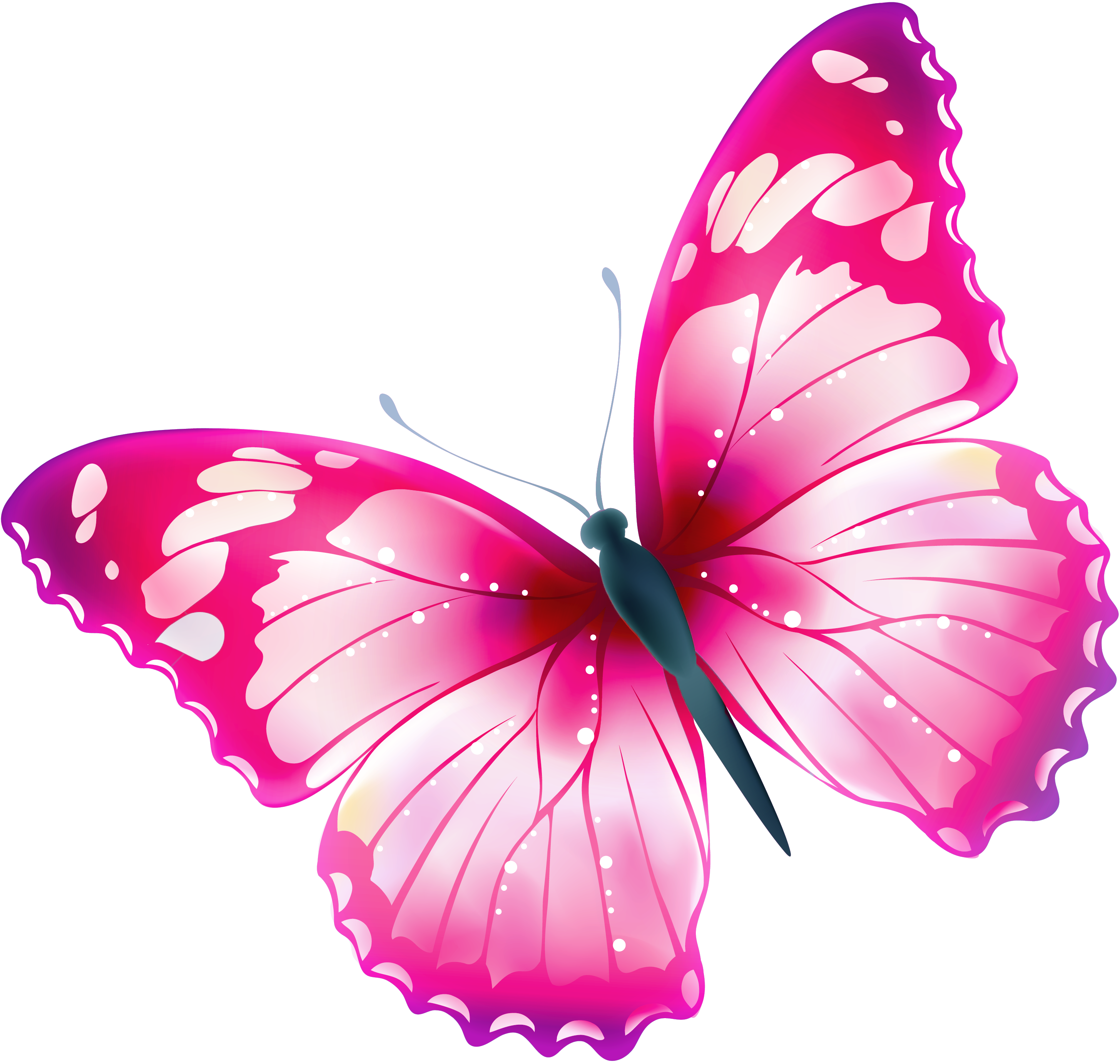 pin by luna christensen on clipart transparent butterfly