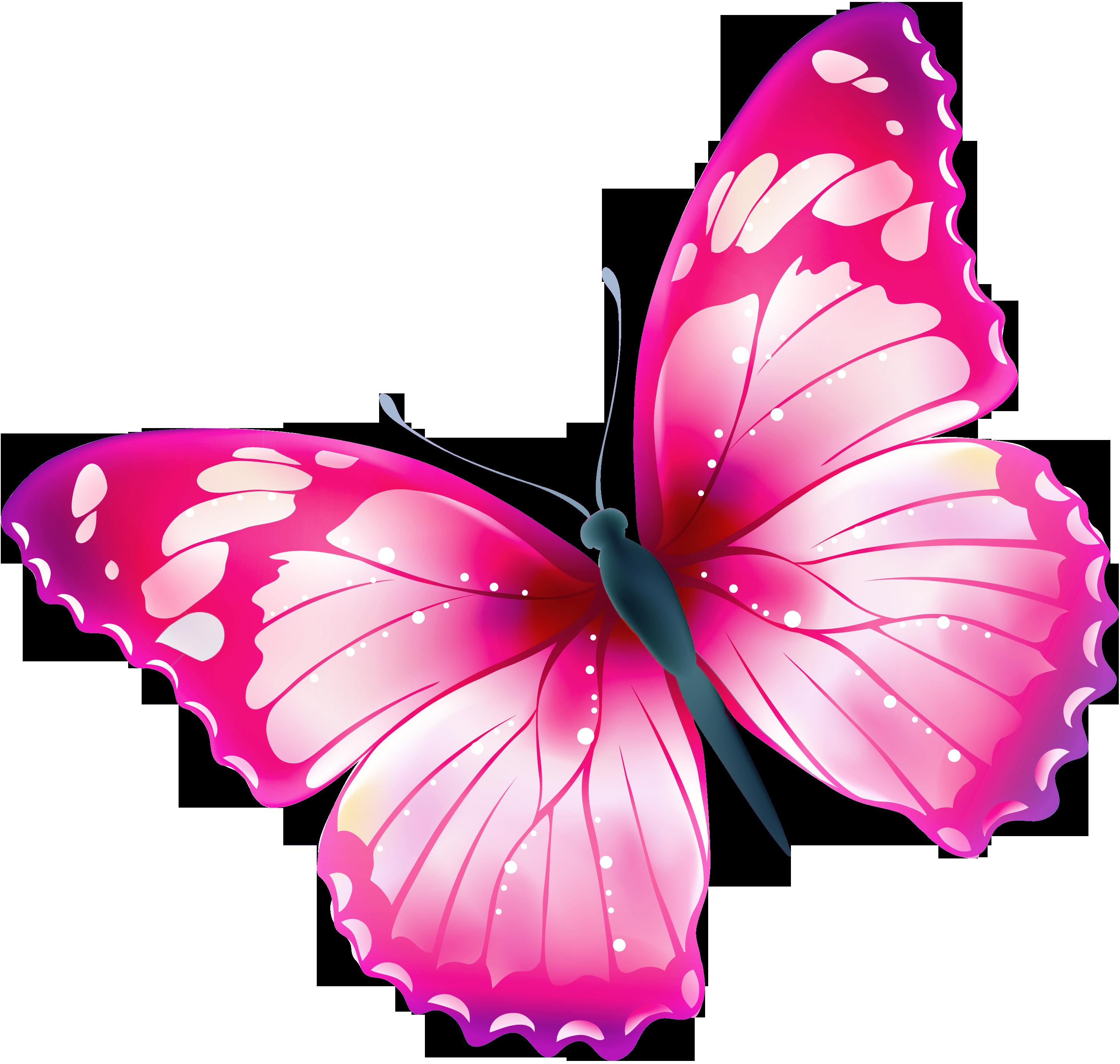 Bildergebnis für schöne schmetterlinge | Schmetterling ...