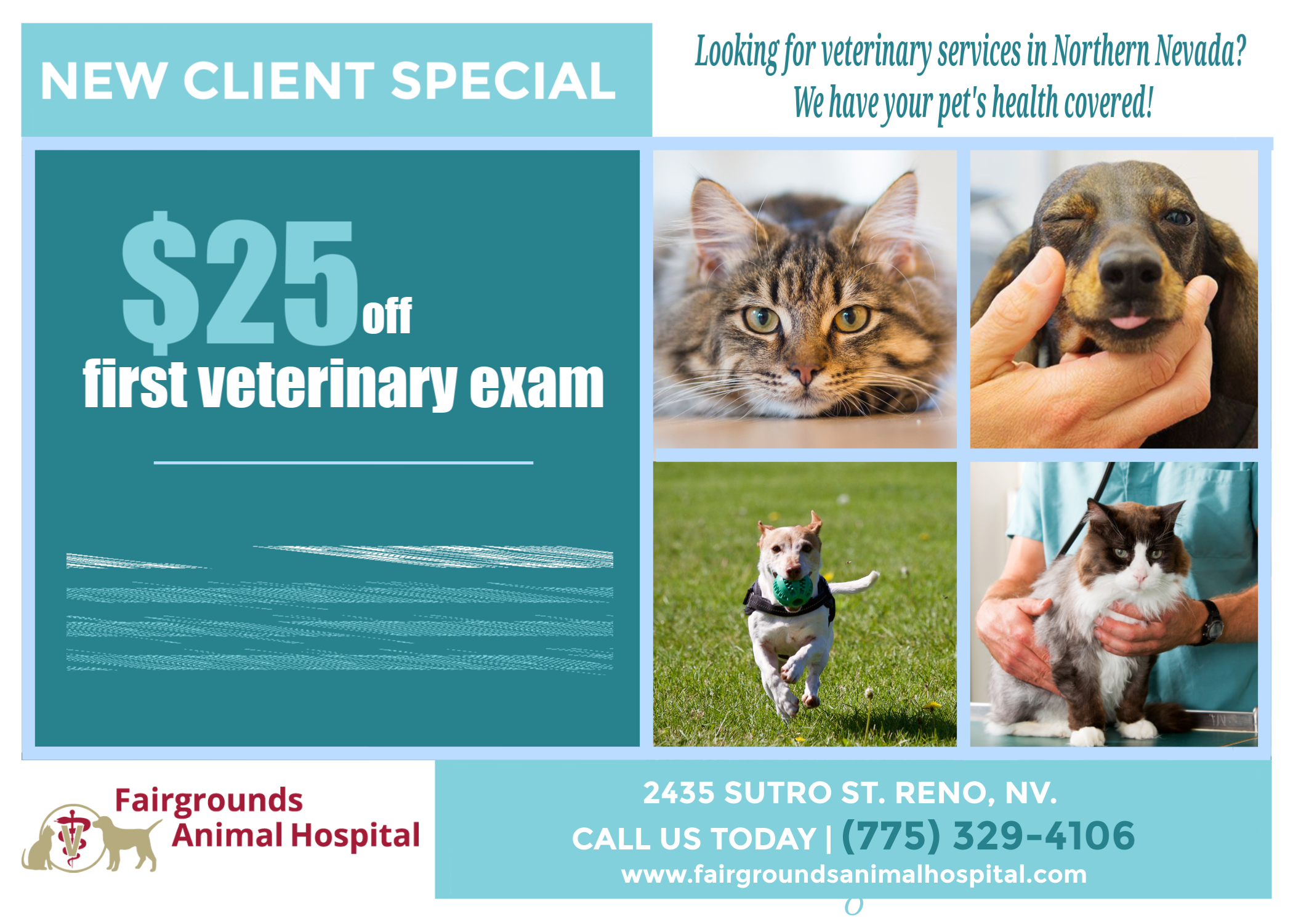 Looking For A New Veterinarian In Northern Nevada Fairgrounds Animal Hospital Veterinary Services Veterinary Care Pet Health
