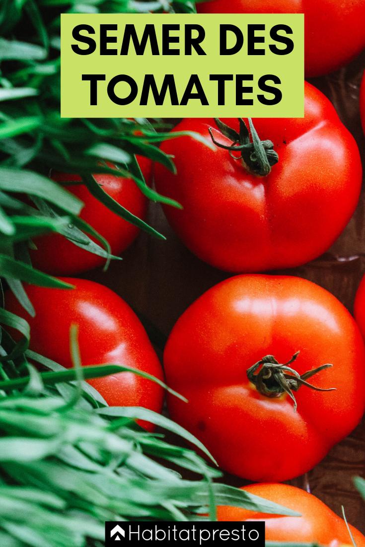 Potager : quand semer et quand planter les tomates ?   Quand planter les tomates, Jardin de ...