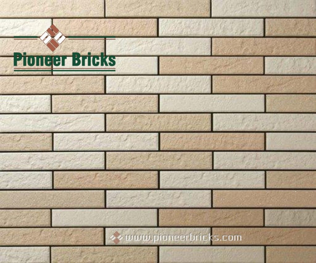 Pioneer Bricks Being The To Brick Manufacturers In India Understands And Values Your Dream For Having A Home H Brick Cladding Engineering Bricks Brick Veneer
