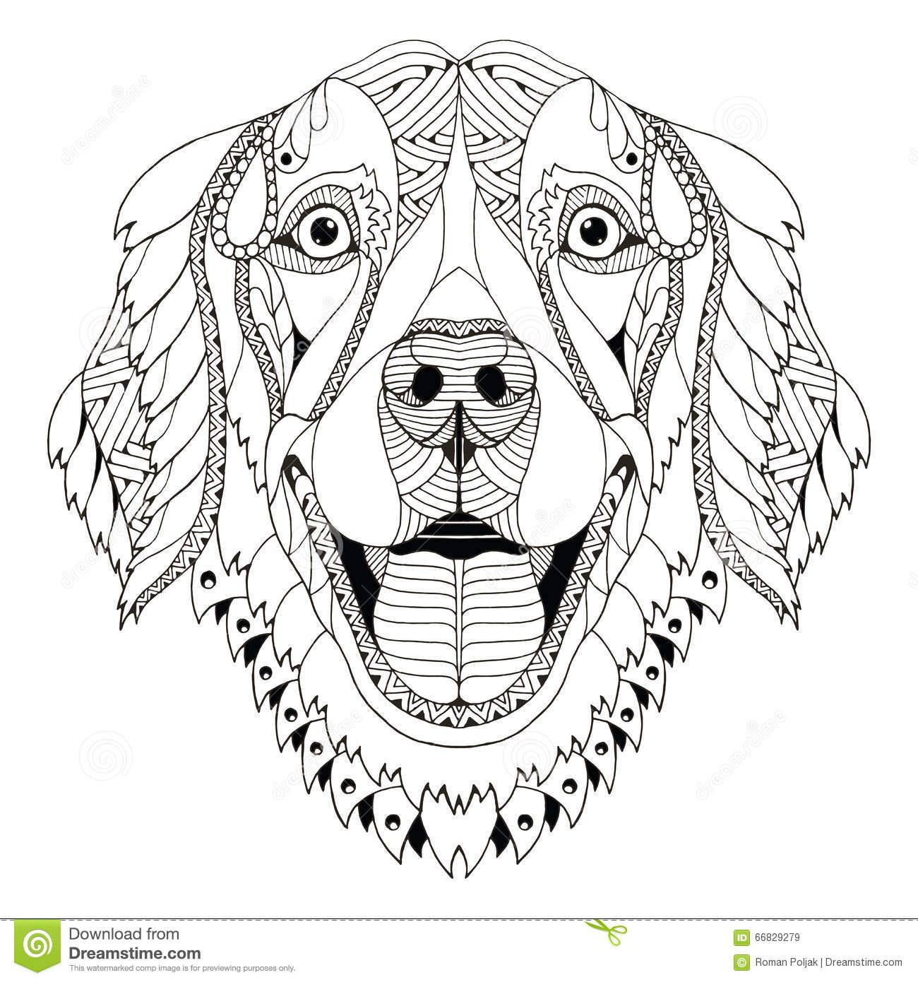 Adult Coloring Pages Shells Printable Google Search Dog