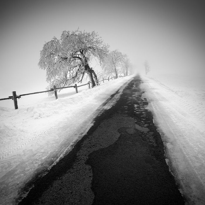 Photography · b w photoscolor blackwhite