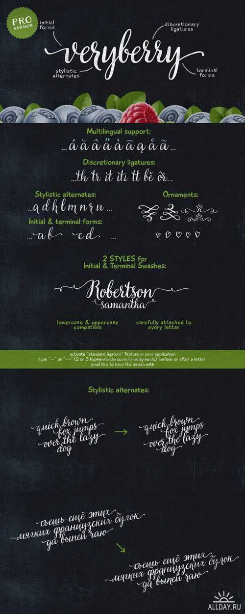 Veryberry Pro Font Family