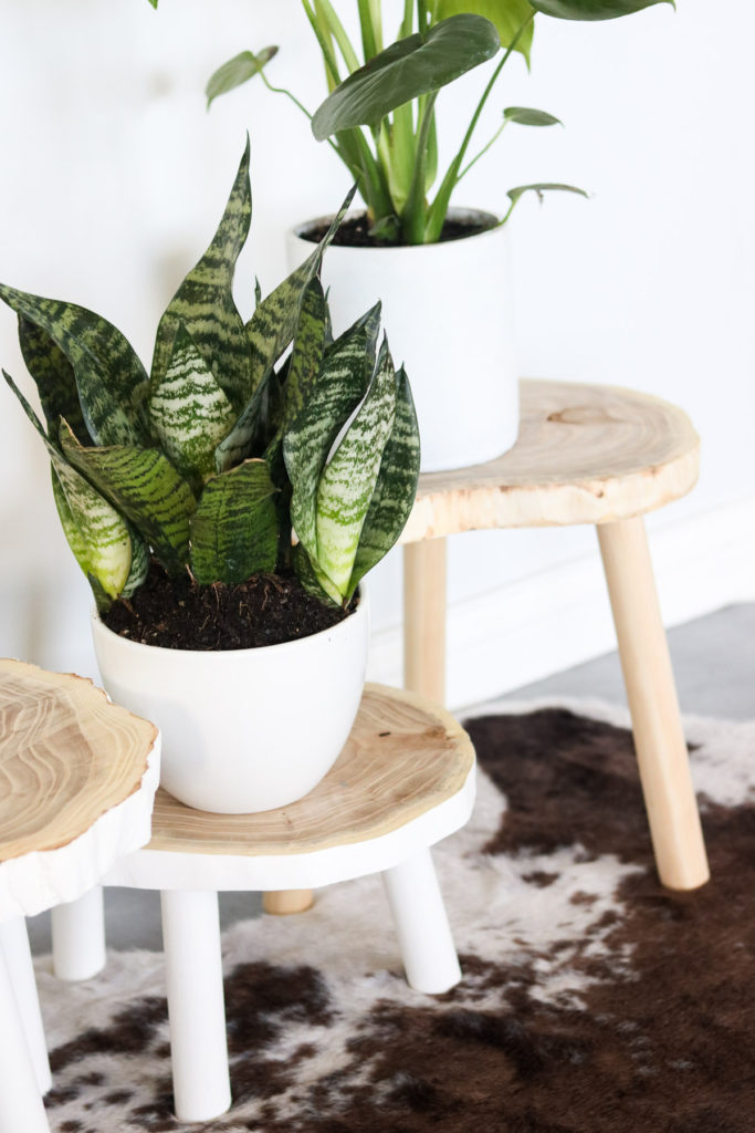 DIY Plant STANDS FOR $7-QUICK AND EASY! WOOD PLANTS STANDS ... on Amazing Plant Stand Ideas  id=55390
