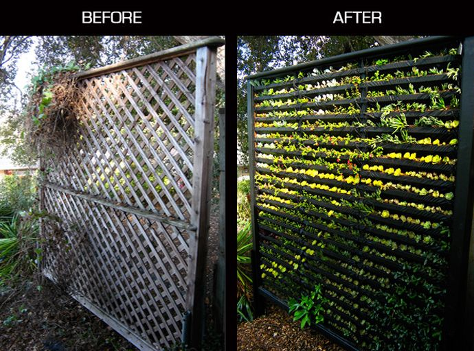 cool diy green living wall projects for your home small on live wall id=96043
