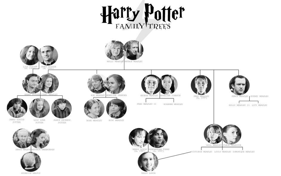 Harry Potter And The Cursed Child Family Tree Craft Family Tree Arbre Genealogique Harry Potter Arbre Genealogique Arbre Genealogique Famille