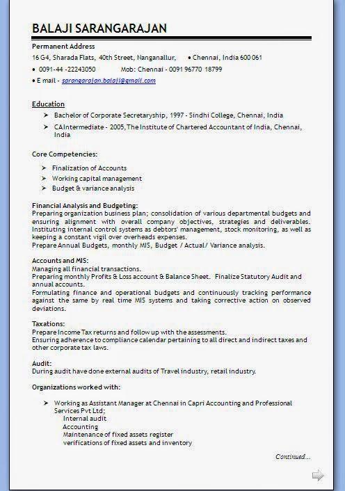 Blank Cv Format Financial Analysis Core Competencies Cv Format