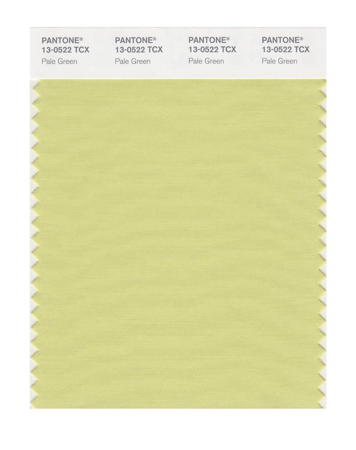 13-0522 TCX Pale Green PANTONE FHI Color Swatch Card   Products ...