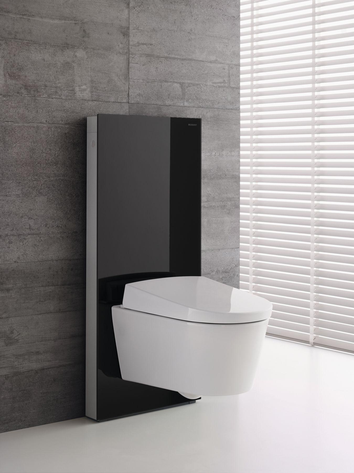 Bathroom Inspirations With Geberit Aquaclean Moderne Badkamer Interieur Kleine Toiletruimte Badkamer Ontwerp