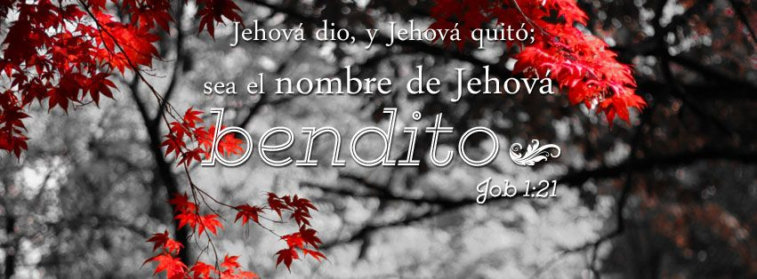 Resultado de imagen de Jehová dio, Jehová quitó. ¡Sea el nombre de Dios bendito