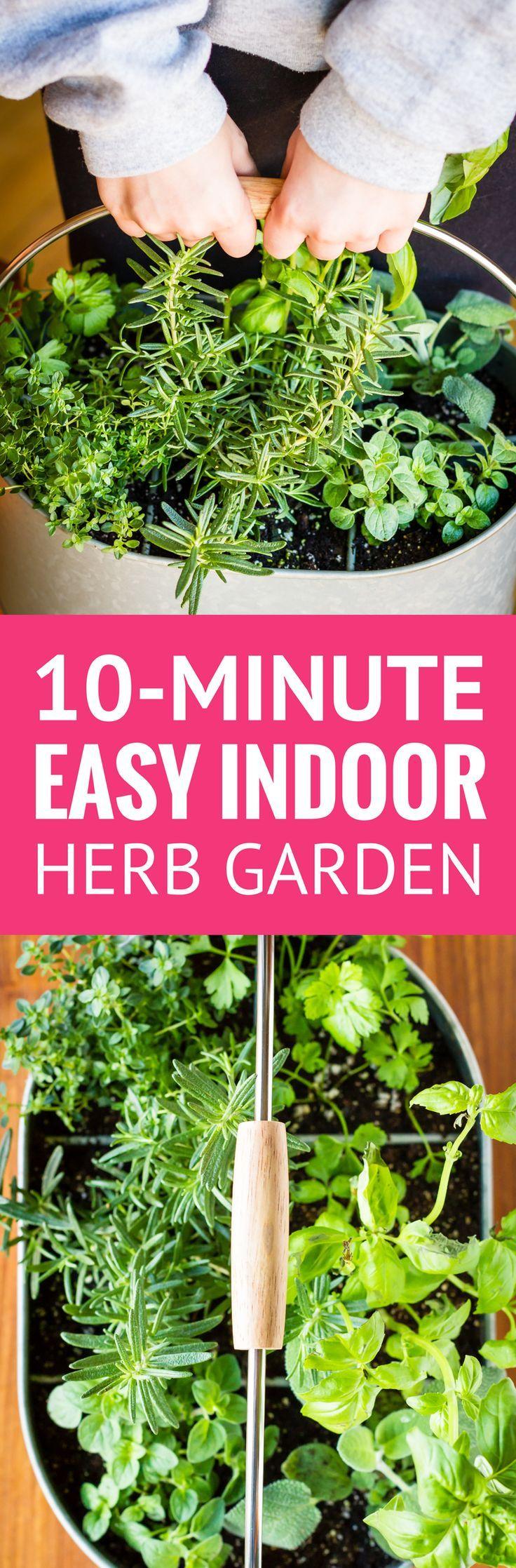Easy Indoor Herb Garden -- I was an indoor container ...