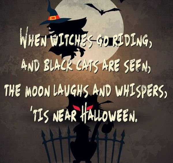 Beautiful 50 Funny Happy Halloween Quotes For Halloween Cards
