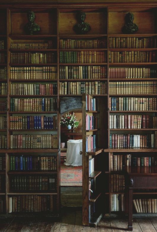Formal Old World Style Library I Feel More Erudite Just Looking
