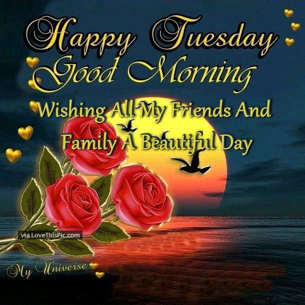 Good Morning Tuesday Images : Happy tuesday good morning bill pinterest