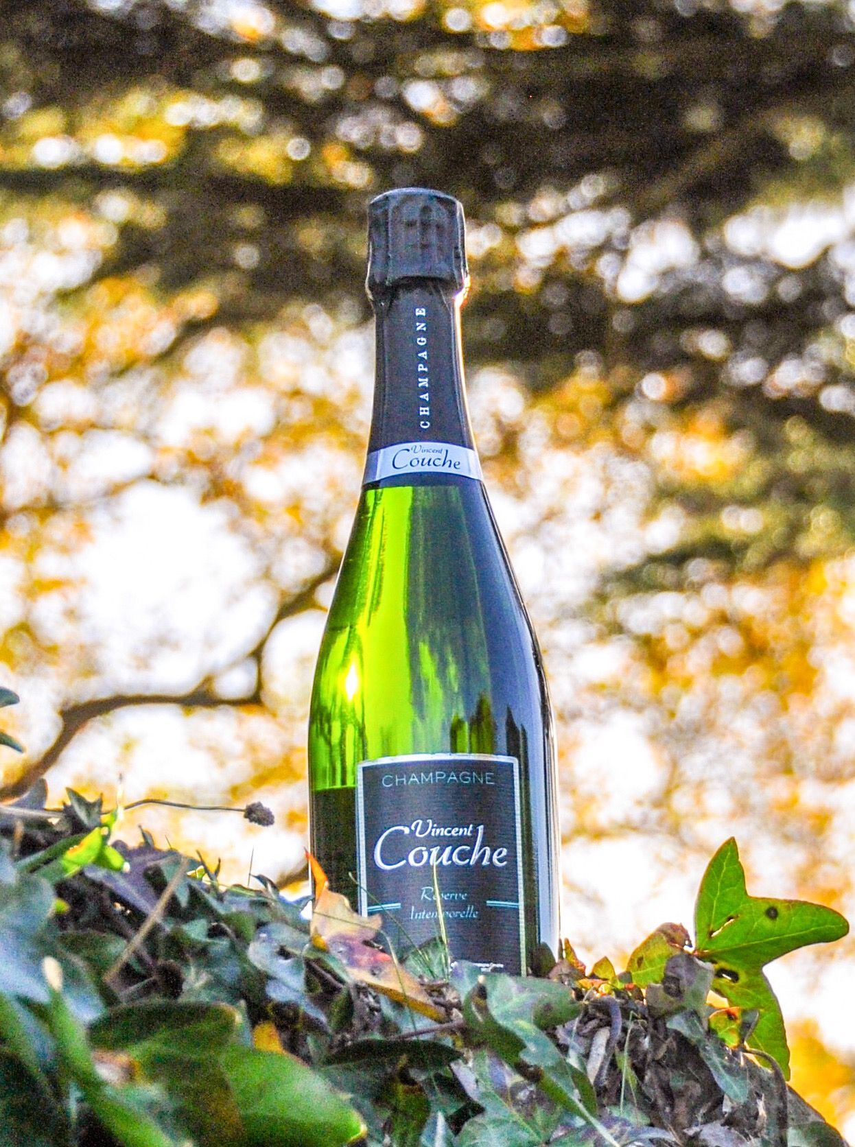 Pin By Nfizz Wines On Nfizz Wines Uk Champagne Vincent Couche Biodynamic And Vegan Sparkling Wine Champagne Wine Tours France Wine Bottle Carrier