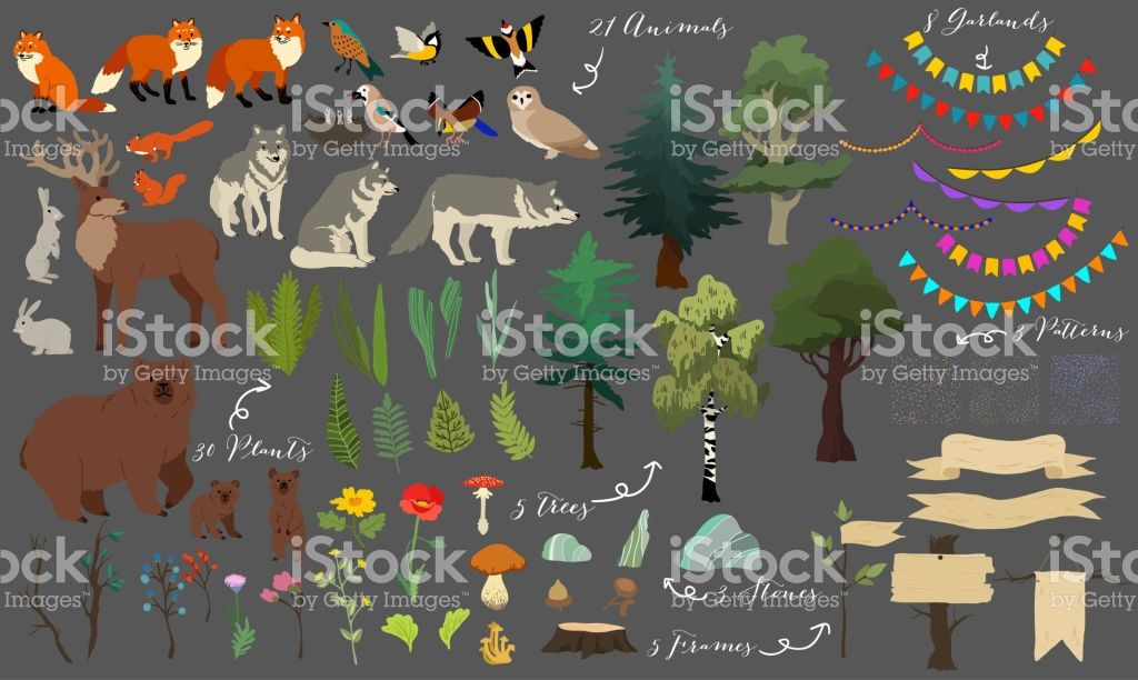 Set Of Cute Forest Elements Animals Trees And Other Vector